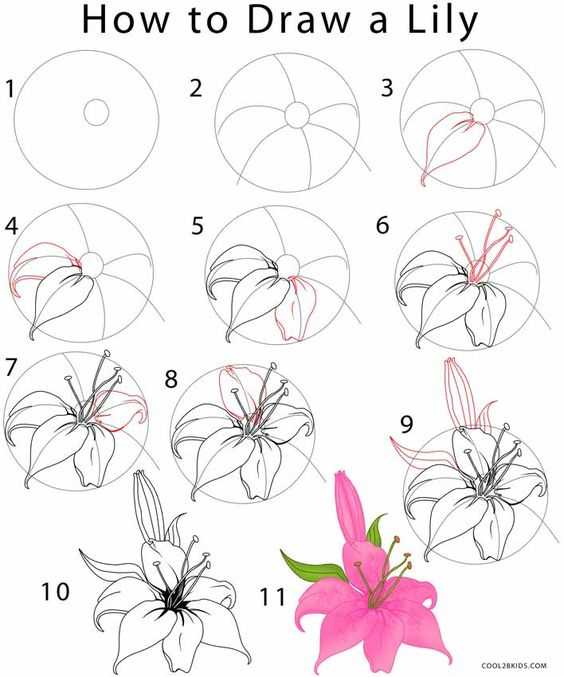 Challenge! Draw and give flowers to others